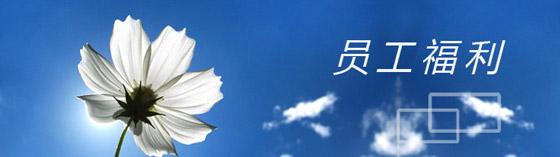 公司福利(中文)